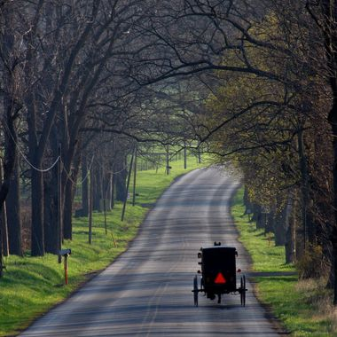 Amish buggy driving along a back road in Big Valley, central Pennsylvania
