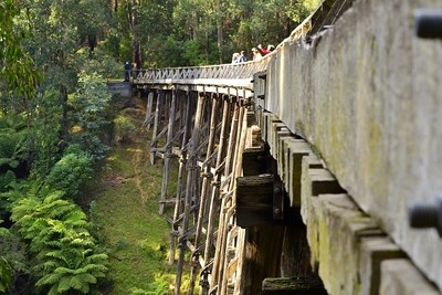 Nojee Trestle Bridge (disused) located in the East of Victoria