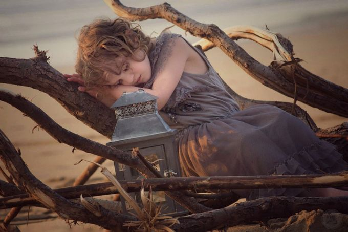 Sleeping beauty by avrilglavin - Fallen Trees Photo Contest