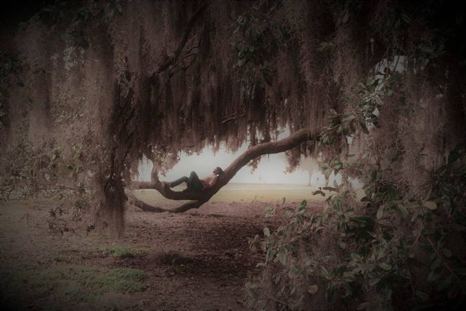 Misty Meditations by AdirahsEyes - A Walk In The Mist Photo Contest