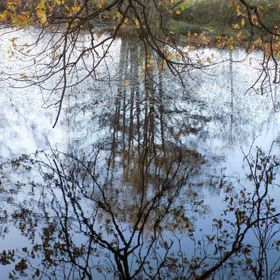 This photo was taken on a Nikon L330, this pond is located in a woodland area behind my local golf course. It is very good for reflective and sym...
