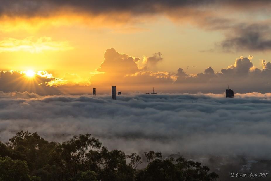 Foggy Brisbane sunrise