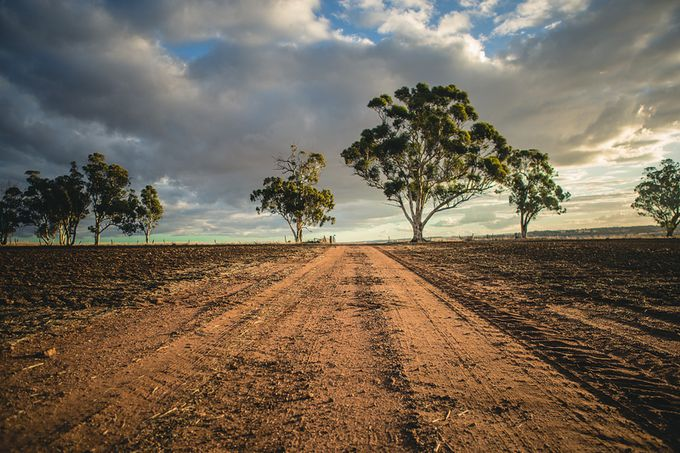 Farm road by lisanicole - Country Roads Photo Contest