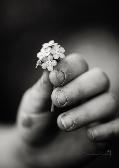 Her Hands