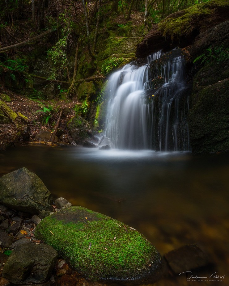Strickland Falls, Hobart, Tasmania by lake_of_tranquility - Our Natural Planet Photo Contest
