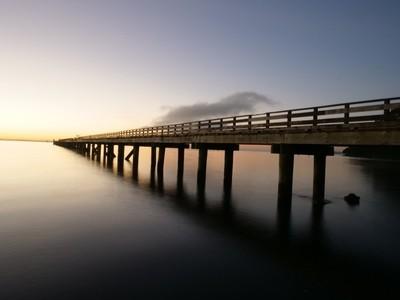 What a morning.....Cornwallis NZ