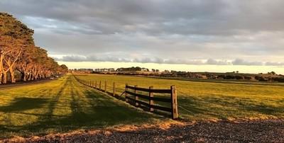 Green landscape - Phillip Island (mobile phone)