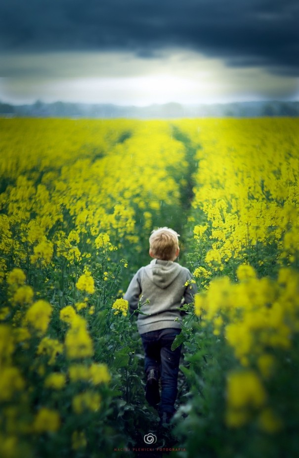 Run by maciejplewicki_fotografia - The Colors Photo Contest