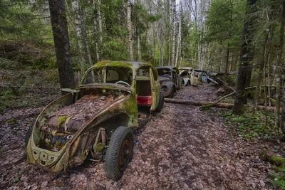 Rusty Beetle's