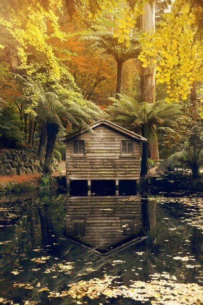 Boathouse in autumn