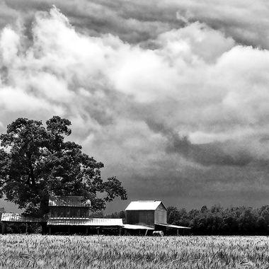 Stormy Barn 5 BW
