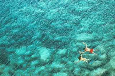 Above view of couple snorkeling in sea water