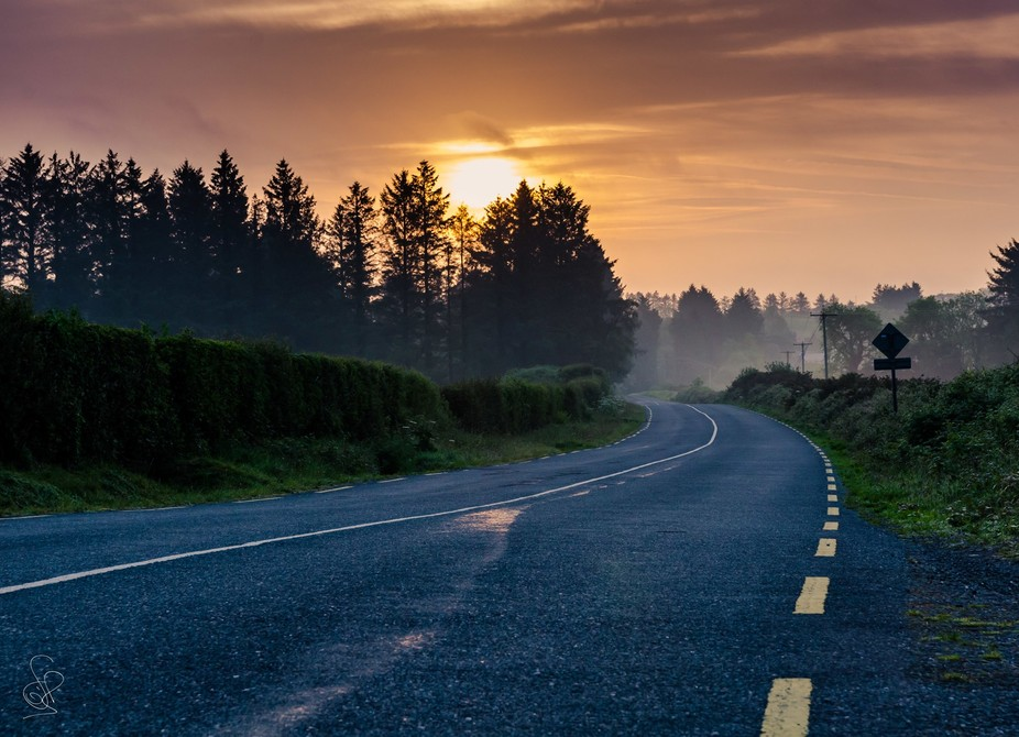 Foggy road at sunrise