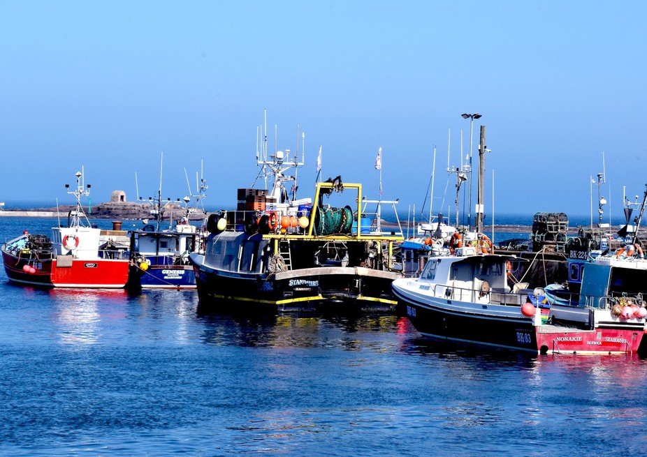 Seahouses Harbour DSC_0243