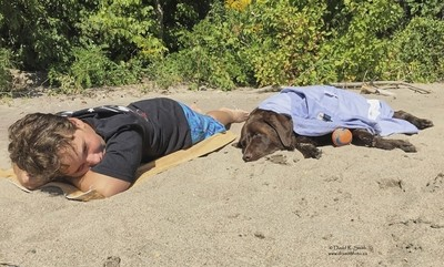 Bruce the Moose Chocolate Lab resting on sandy beach next to his Master - Photo by David R. Smith
