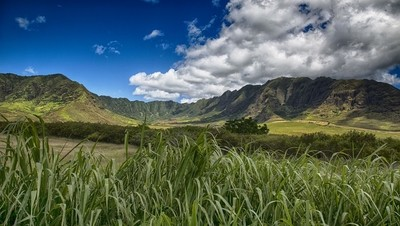 Mountain View on Western Oahu