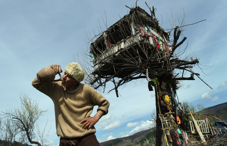 Panta Petrovic, aged 65, for ten years living in his tree-house in the suburbs of the south-easte...