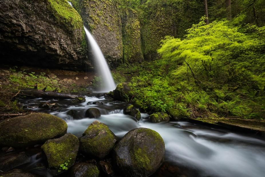Upper Horsetail Falls