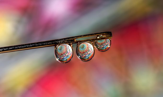 Trip Drop by NickLucas - Macro And Patterns Photo Contest