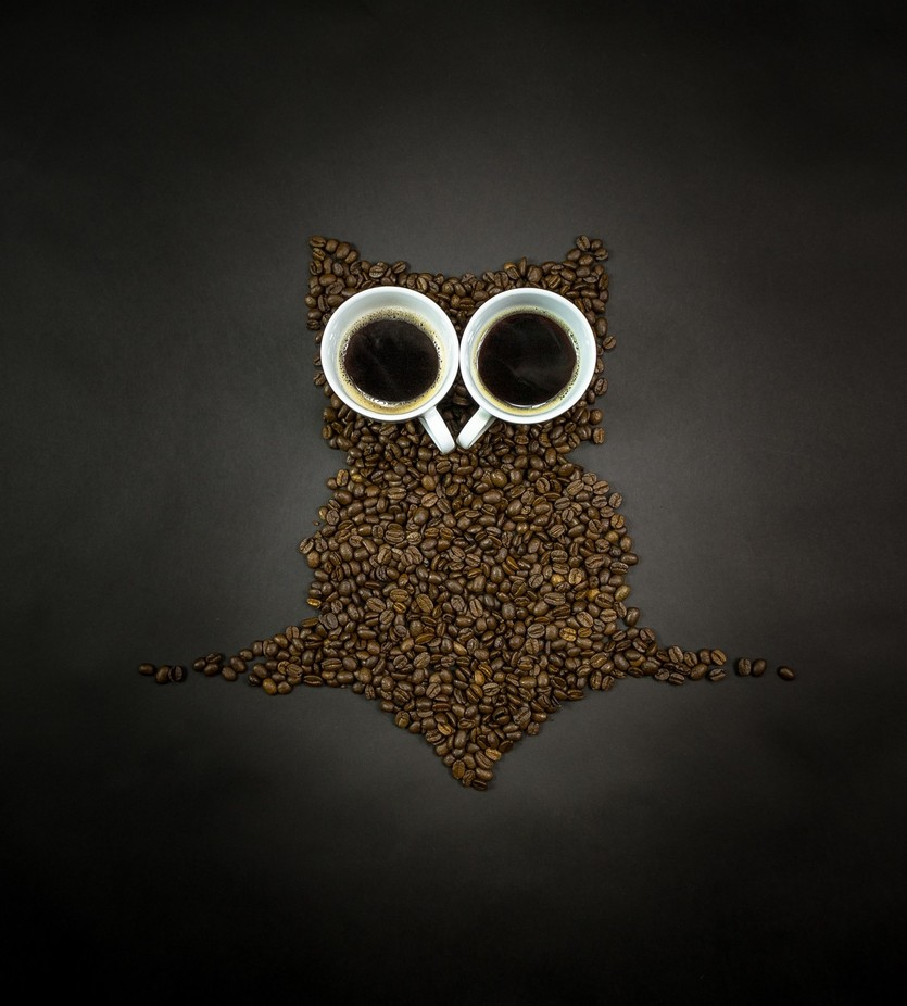 Coffee or Owl? by akphotographystudio - The Brown Color Photo Contest