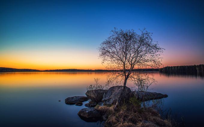 Lakeside Tree by Masabus - A Lonely Tree Photo Contest