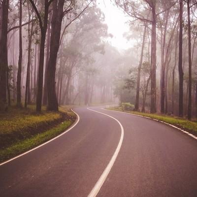 The road to Warburton