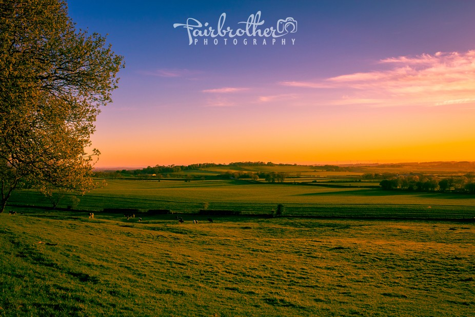 Taken at Newton-Under-Roseberry, Newton Woods/Roseberry Topping. Stunning colours just before I l...