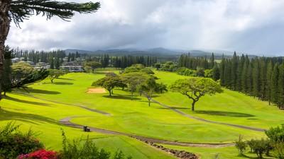 Beautiful  Kapalua Golf Course