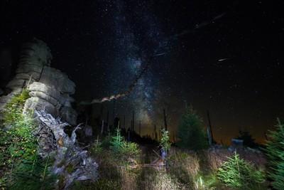 Milchstraße mit Fledermaus