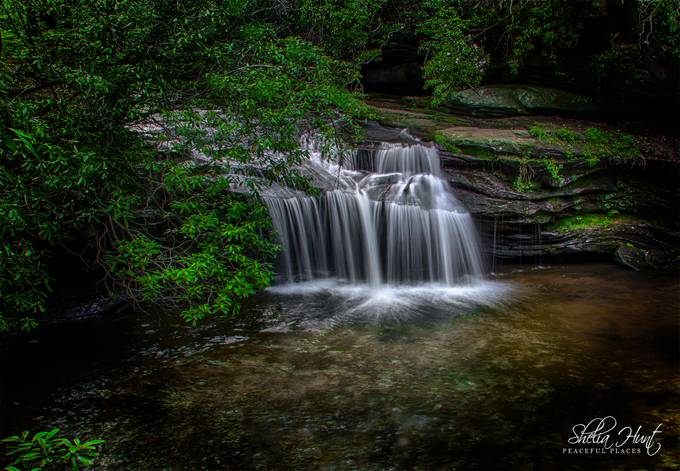 Secluded Waterfalls by sheliahuntphotography - Celebrating Nature Photo Contest Vol 5