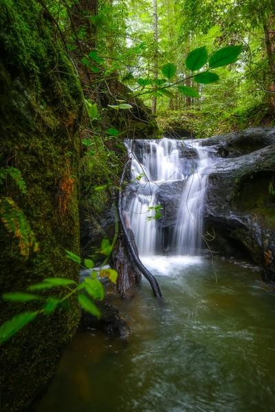 Sempervirens Waterfall at Big Basin