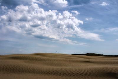 Saskatchewan's Great Sandhills