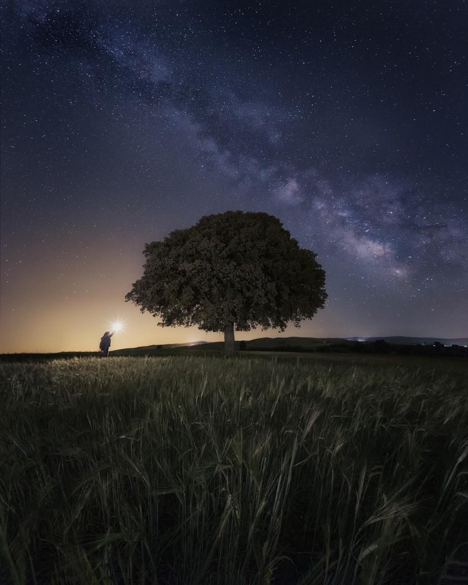 Pure Nature by alvarosj - Night Wonders Photo Contest