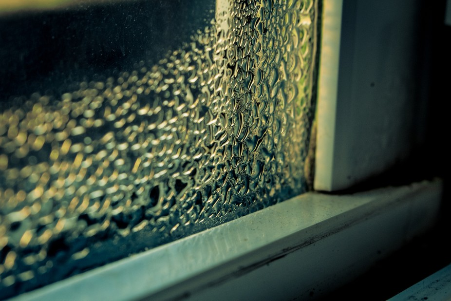 Some water had condensed on the inside of my window and I decided to take a picture of it.