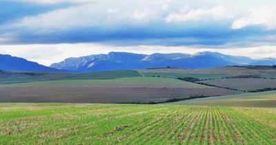 South Africa, landscape in the Western Cape