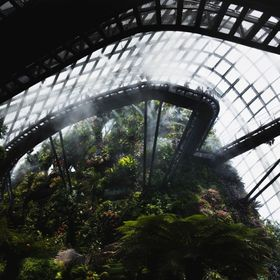 The cool, refreshing cloud dome in Singapore was vivid and lush in plants. Crazy how different this was from the bustling city of Singapore, yet ...