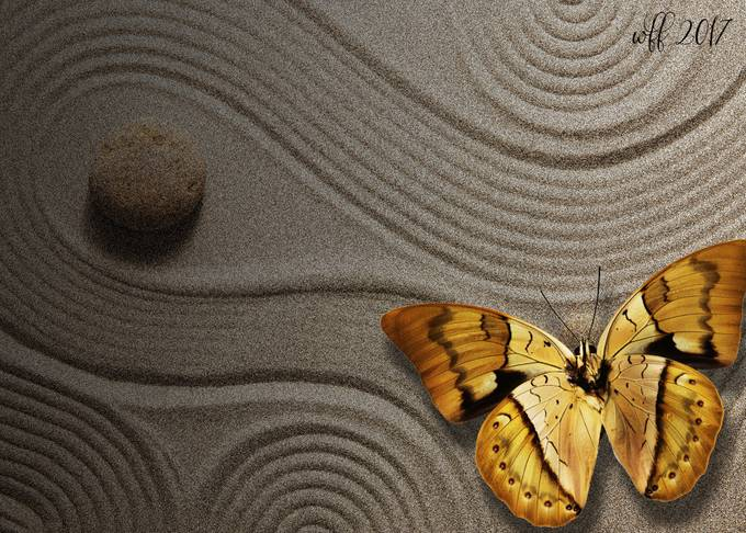 zen-butterfly by french1944 - Subjects On The Ground Photo Contest
