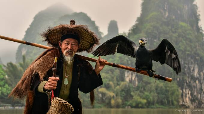Cormorant fishing by q-liebin - Cultures of the World Photo Contest