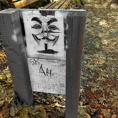 Anonymous at the park