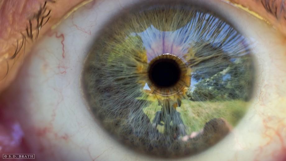 Macro shot of my left eye.