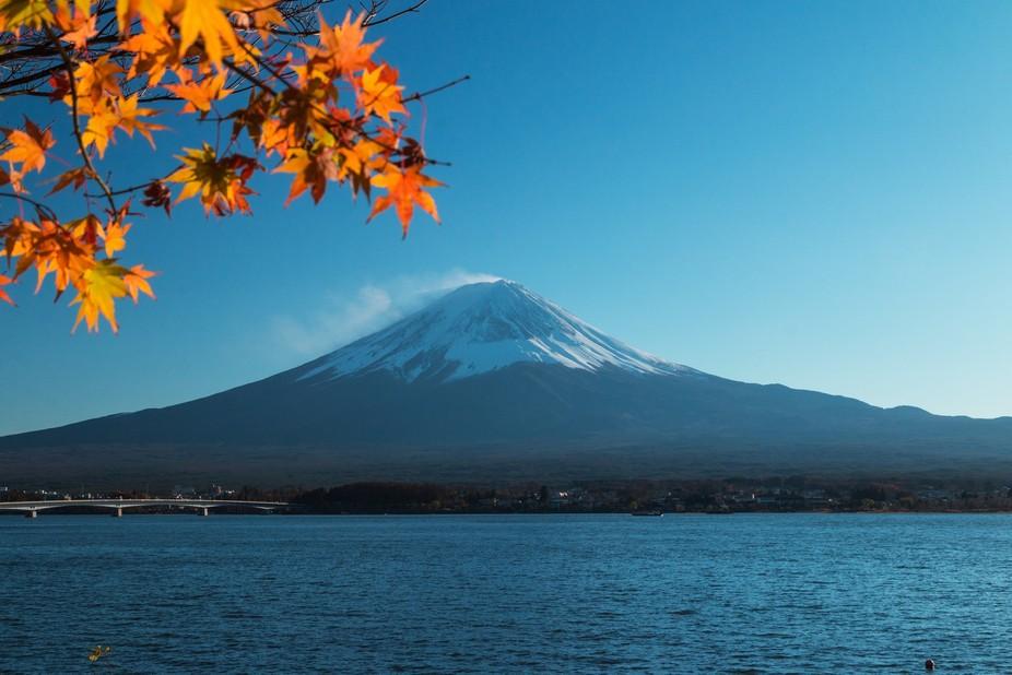 It was taken during Autumn