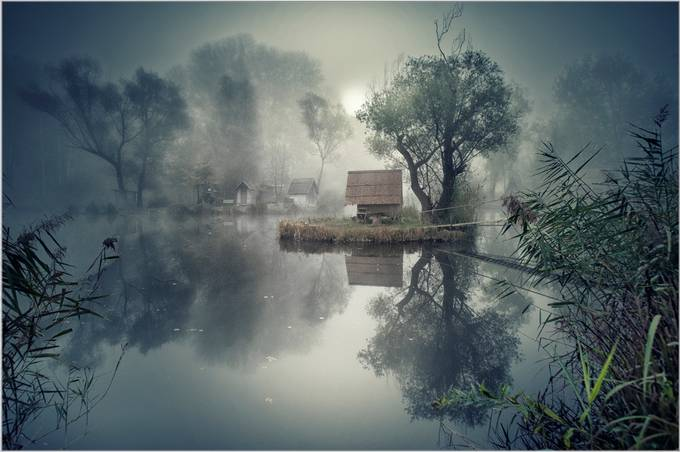 Awakening  by Cpt - Lakes And Reflections Photo Contest