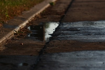 The Beauty Of The Dark Puddle