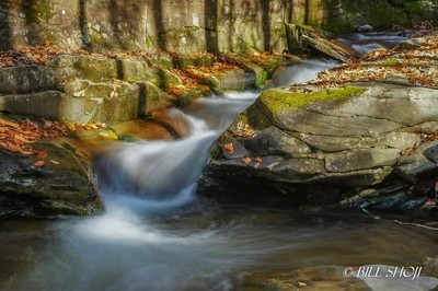 Stream of Frost Valley in Autumn, New York State