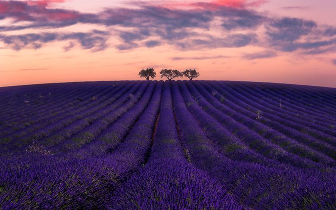 Nuit sur Valensole by Fannie_Jowski - Show Minimalism Photo Contest