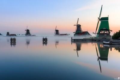Windmills in the morning fog