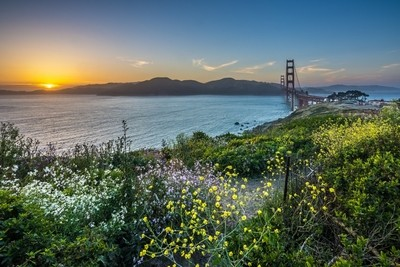 GGB sunset n flowers