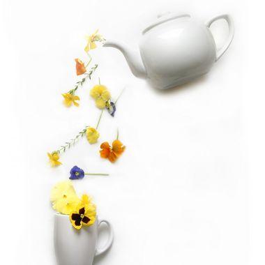 A Cup of Prit-Tea
