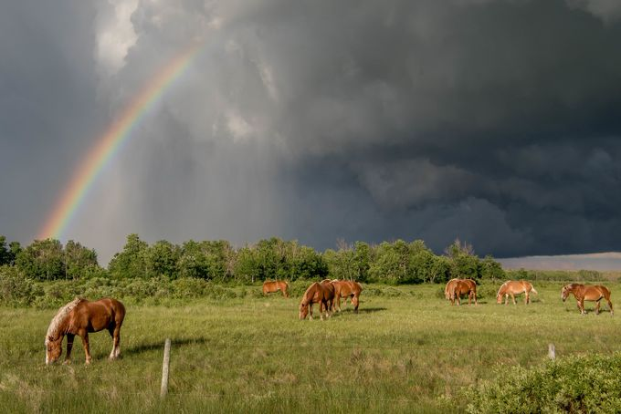 Stormy Skies by daleigh - Rainbows Overhead Photo Contest
