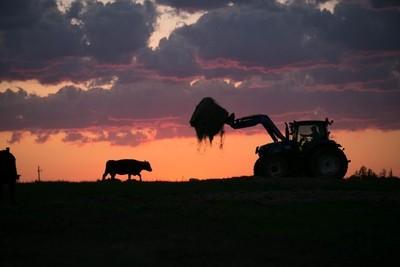 Farming Silhouette - RAW File